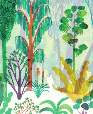 The cover of The Forest, which has no text. From the Kirkus review of this title: The book's design is clever, instantly arousing curiosity with its translucent jacket (sans title) overlaying brilliantly hued vegetation onto a muted cover.